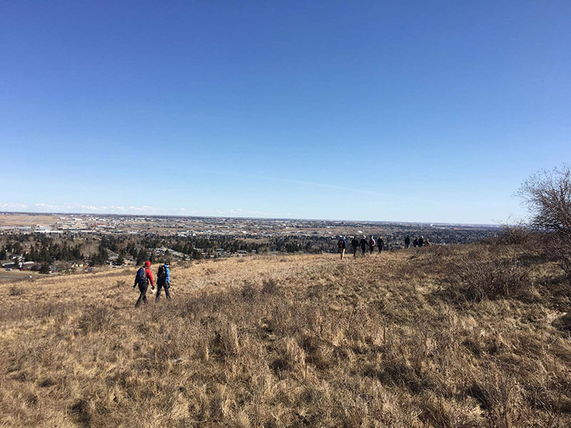 people out on a inner city edible plant walks in nosehill view