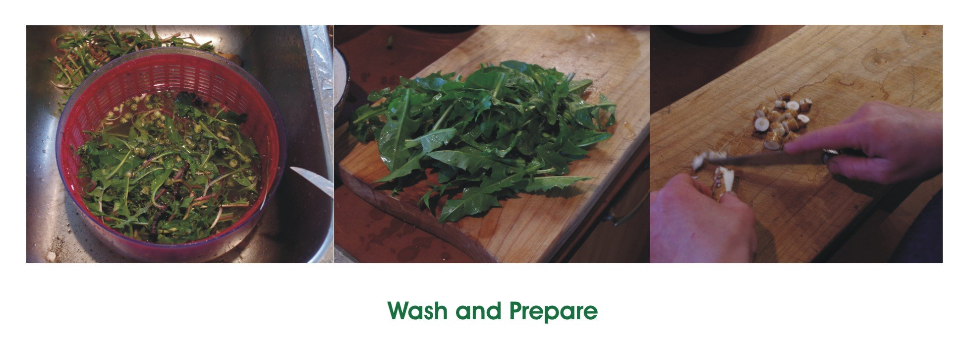 Wash and Prepare Dandelions May 2019