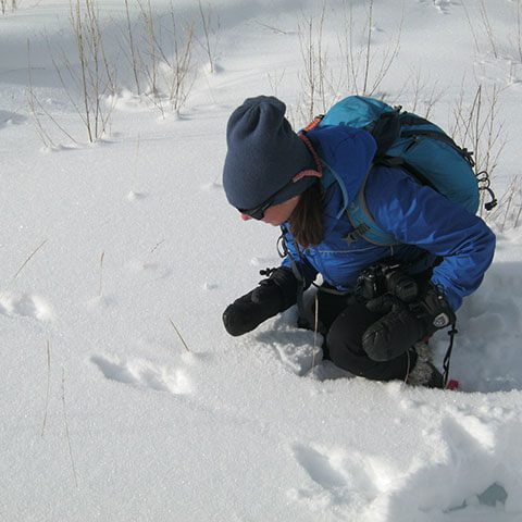 Person kneeling down in the snow