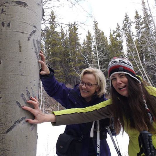 people finding bear claw marks on a tree in winter wild